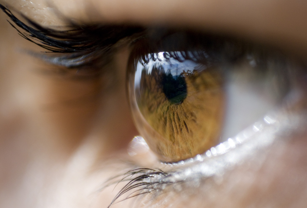 Macular Degeneration: A Major Health Problem In The United States - citysuntimes