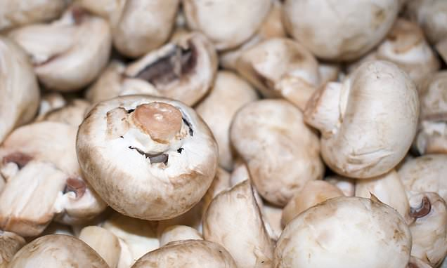 Men are advised to eat mushrooms twice a week to slash risk of prostate cancer - Daily Mail