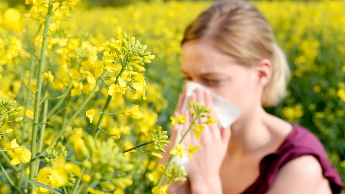 Tips on how to handle the spring allergy season