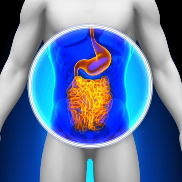 Prostate Cancer Risk Higher Among Men With IBD - Renal and Urology News