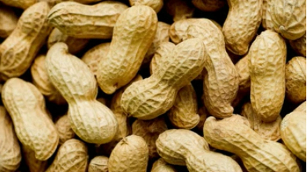 Food Allergies on the rise in Alabama